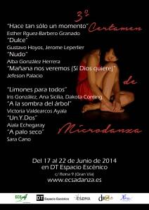III CERTAMEN MICRODANZA (MADRID)